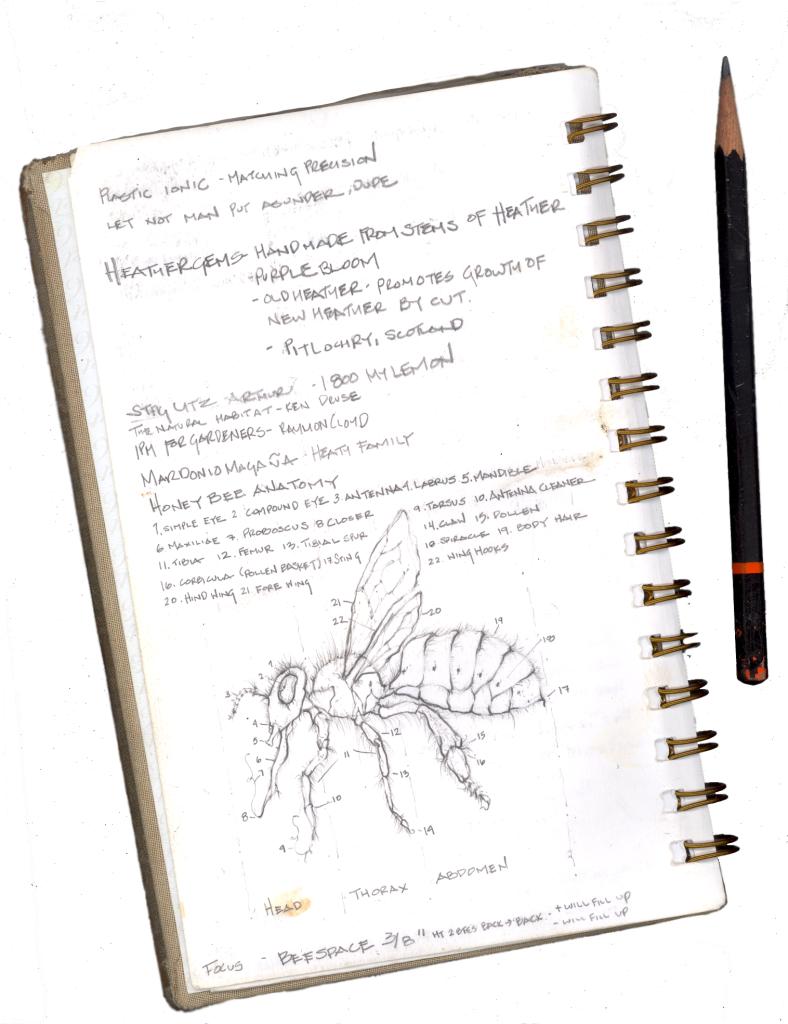 notebook sketching