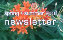 spring-summer 2016 update